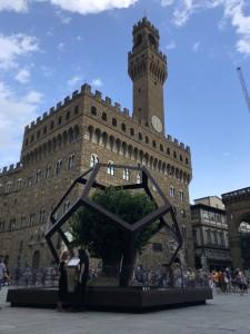 La Botanica di Leonardo Dodecaedro Piazza della Signoria 0