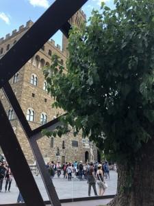 La Botanica di Leonardo Dodecaedro Piazza della Signoria 2